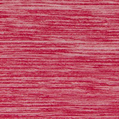 Raspberry (646)